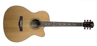 Teton guitar